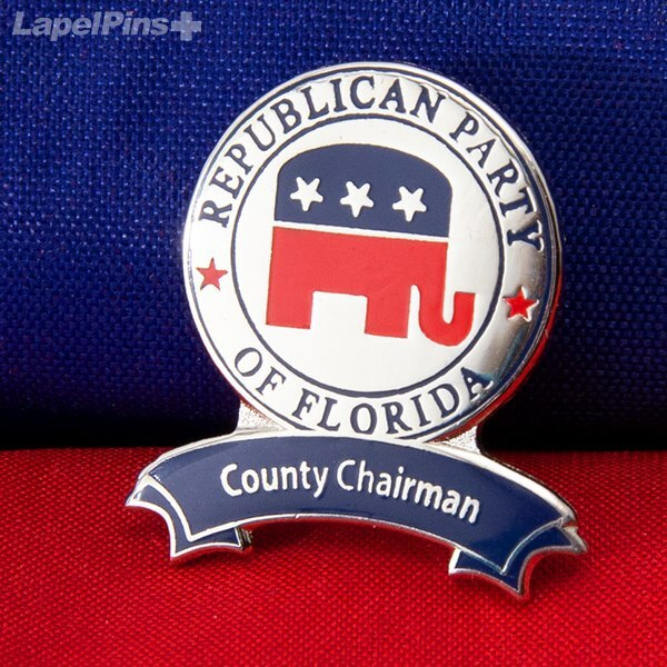 Political Pin