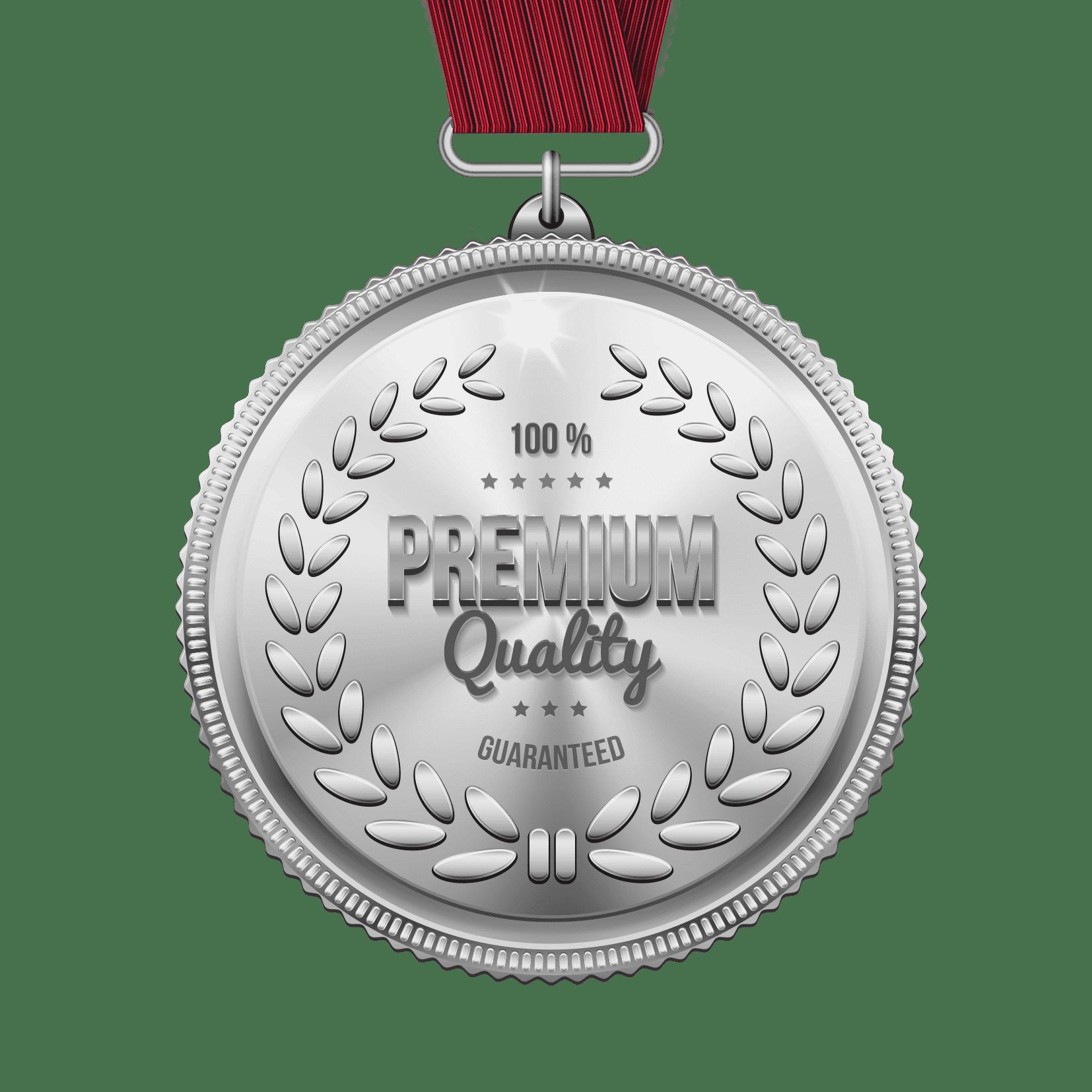 High Polish Silver Medal